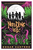 Meddling kids : a novel / by Edgar Cantero.