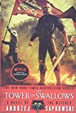 The witcher. 4, The tower of swallows / Andrzej Sapkowski ; translated by David French.