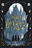 The mystery of Black Hollow Lane. 1 / Julia Nobel.